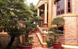 Biệt thự Thảo Điền- Khu Compound Chiến Thắng 215 Nguyễn Văn Hưởng